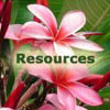 Island Organizers' Resources